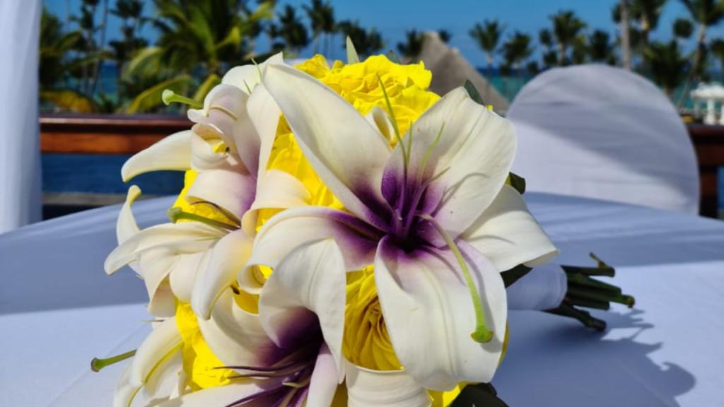 Saiba mais sobre as flores do Destination Wedding